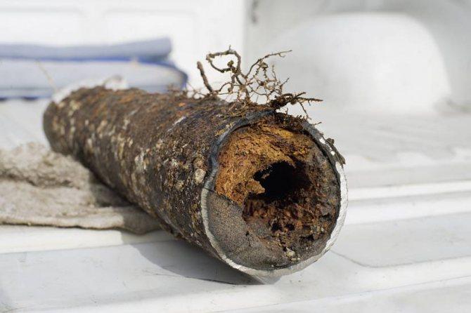Засорённая землёй и корнями канализационная труба